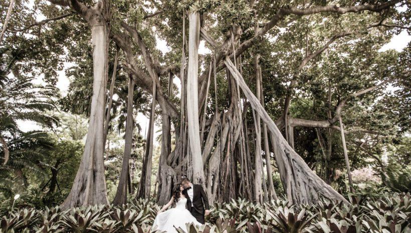 Iza i Łukasz – ślub w Darłowie i sesja na Teneryfie